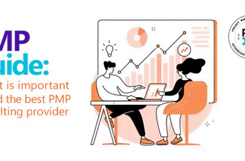 PMP Consulting